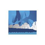 LAA-Logo_525x525px_PNG